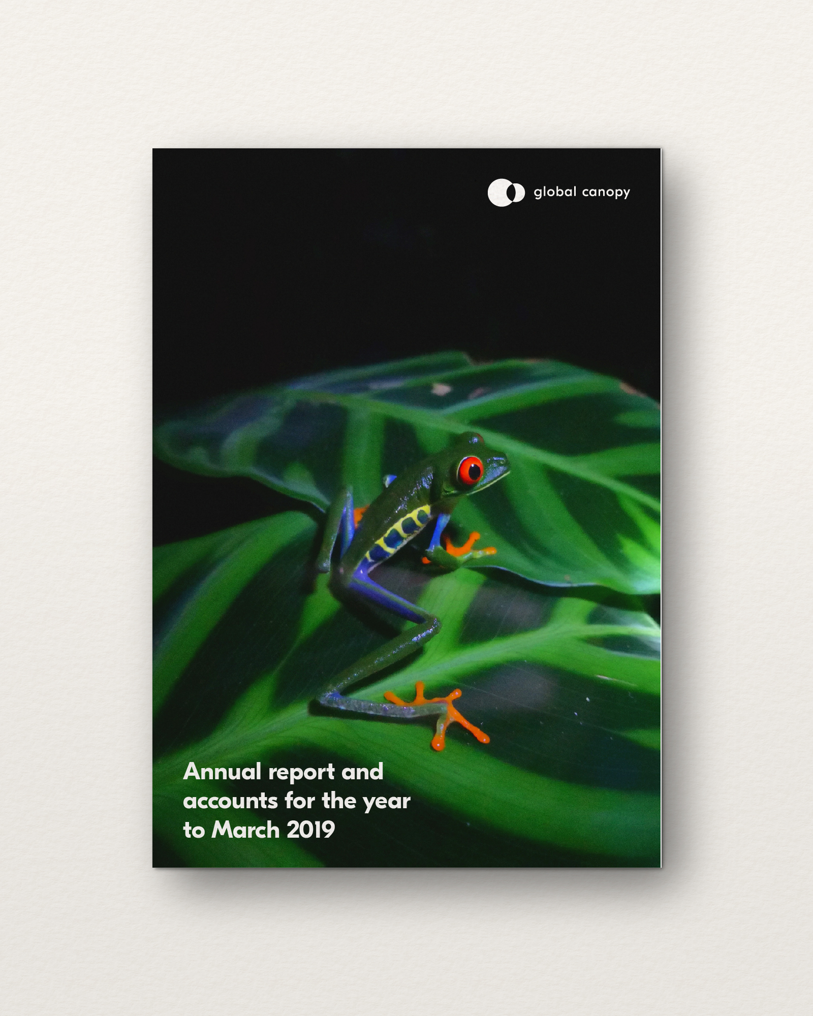 Example of annual report design for Oxford chairty, Global Canopy
