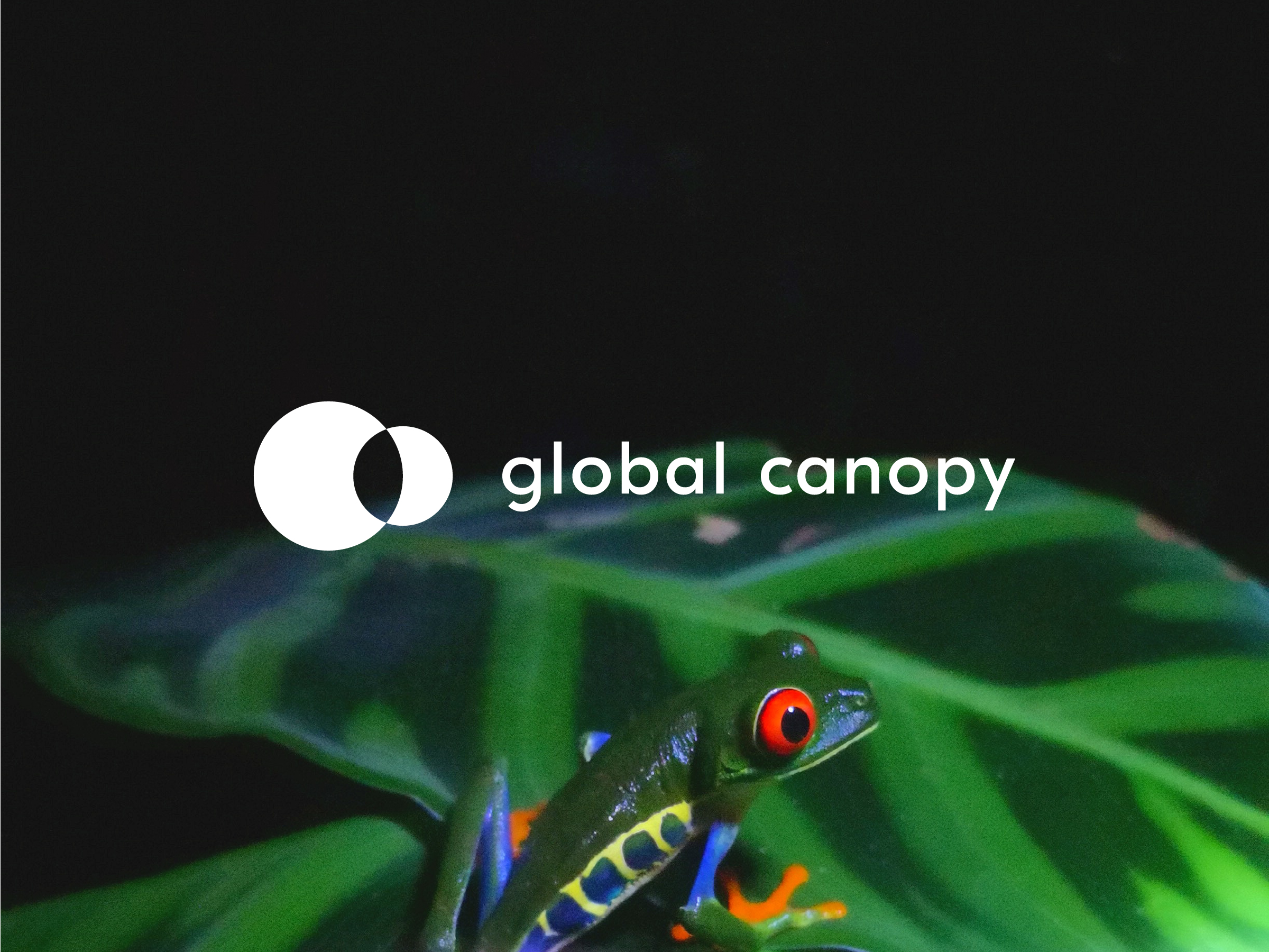 Global Canopy logo
