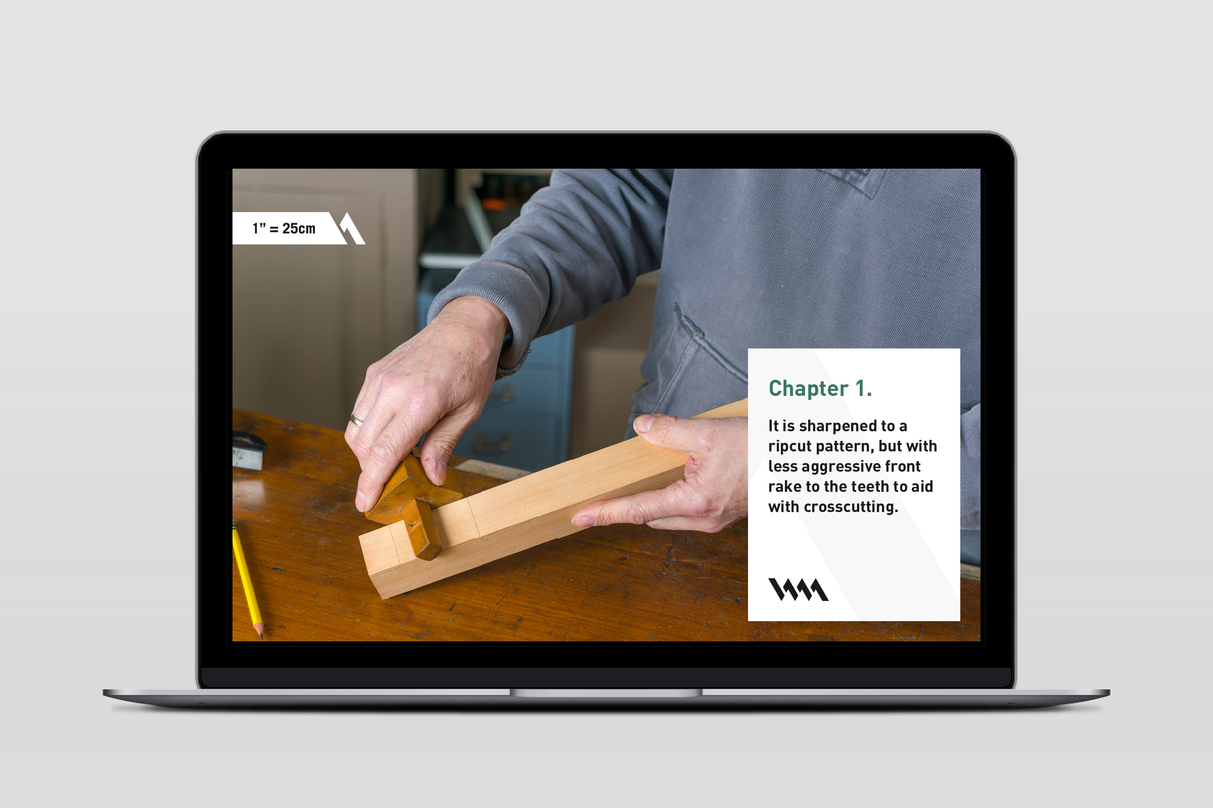 Image of laptop showing online tutorial